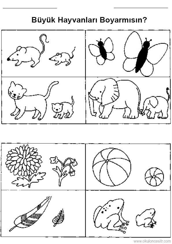 Buyuk Kucuk Calisma Kagidi Okuloncesitr Preschool