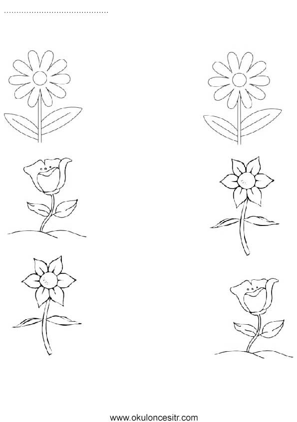 Çiçek Eşleştirme Çalışma kağıdı