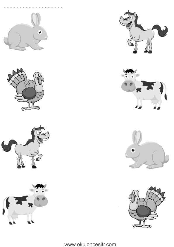 Hayvanları Eşleştirme Çalışma Kağıdı