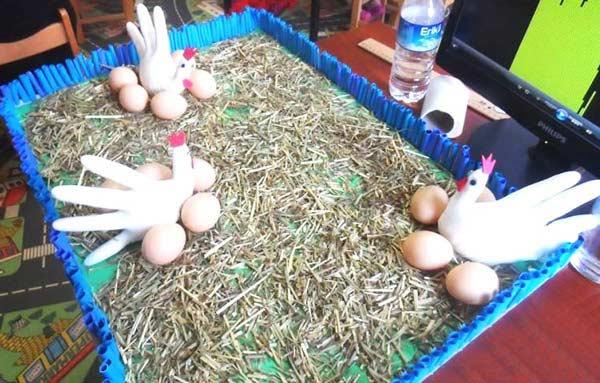 Tavuk Yapımı