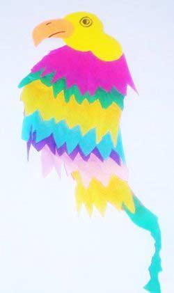 Papağan Yapımı