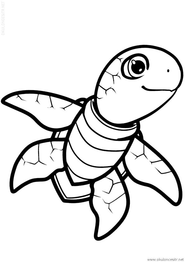 Kaplumbağa Boyama Sayfası