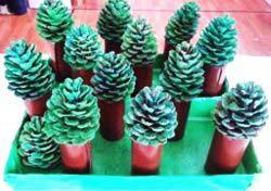 Çam Ağacı Yapımı