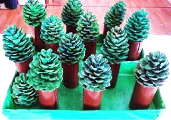 çam Ağacı Yapımı Okulöncesitr L Preschool