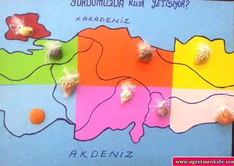 Türkiyenin Meşhur Şeyleri