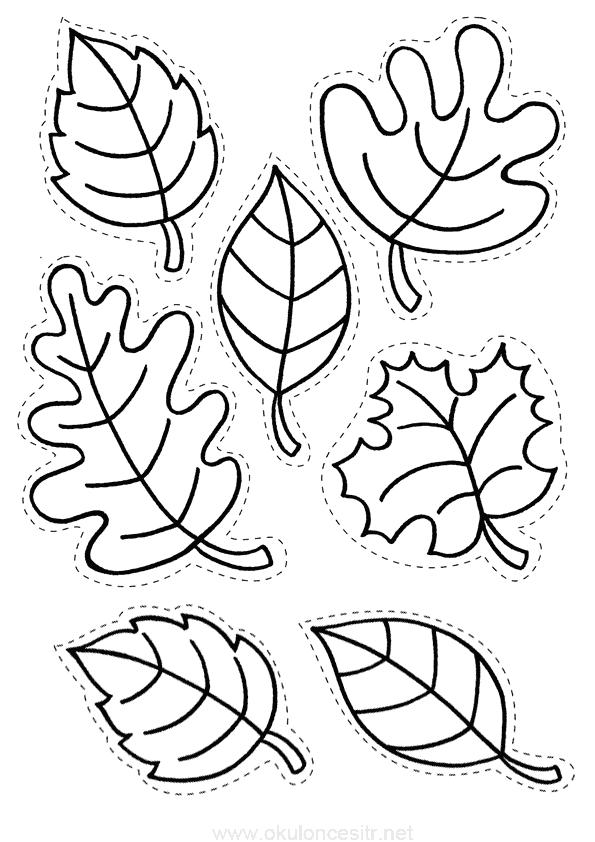 Yaprak Kalıbı