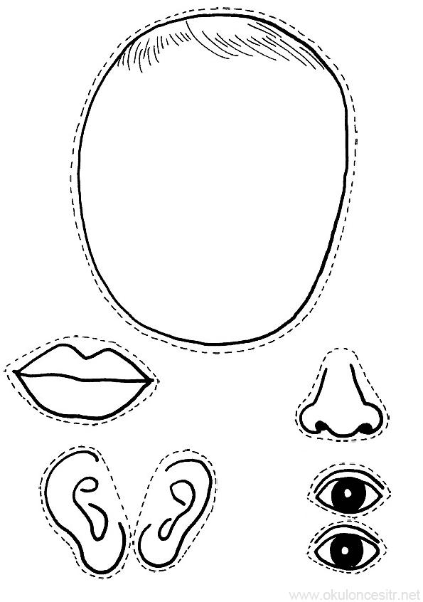 Yüz Kalıbı