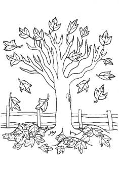 Sonbahar Ağaç Boyama Sayfası