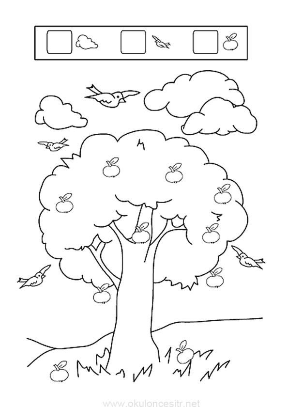 Sonbahar Boyama Sayfasi Okuloncesitr Preschool