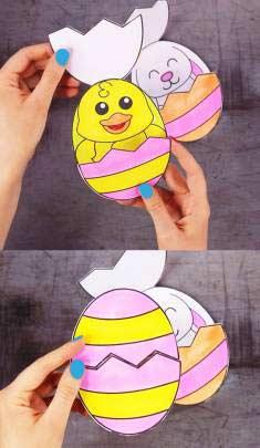 Yumurtadan Çıkan Civciv Yapımı
