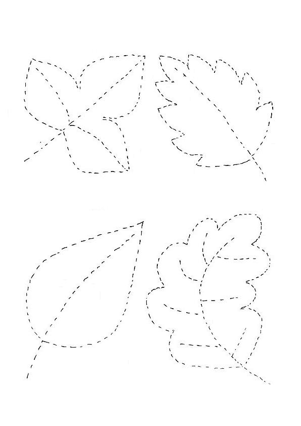 Yaprak Çizgi Çalışması