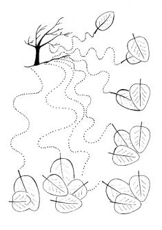 Sonbahar Çizgi Çalışması