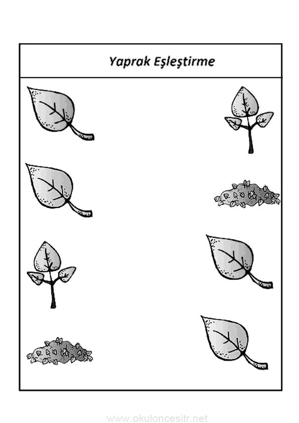 Sonbahar Eşleştirme Etkinliği