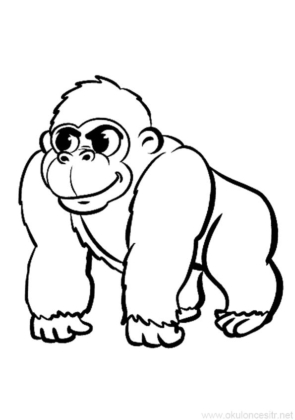 Goril Boyama Sayfasi Okuloncesitr Preschool