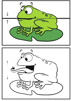 Ağzını Açan Kurbağa Kalıbı