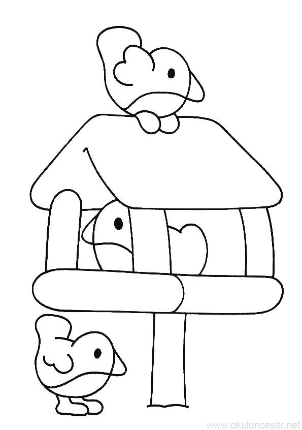 Kus Boyama Sayfasi Okuloncesitr Preschool