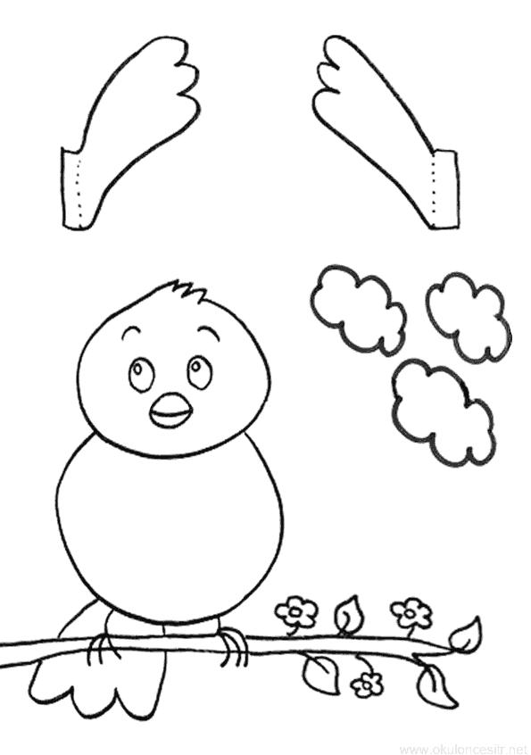 Gozlerini Acip Kapatan Kus Kalibi Okuloncesitr Preschool