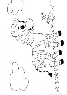 Zebra Boyama Sayfası