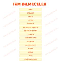 tum-bilmeceler