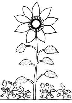 aycicecegi9-boyama-sayfasi
