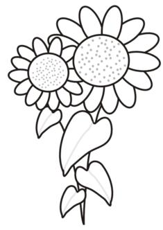 aycicegi1-boyama-sayfasi