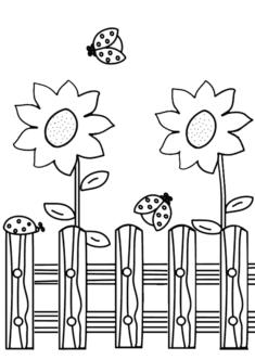 aycicegi10-boyama-sayfasi