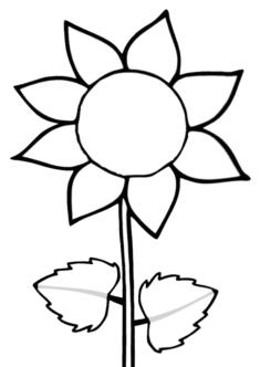 aycicegi16-boyama-sayfasi