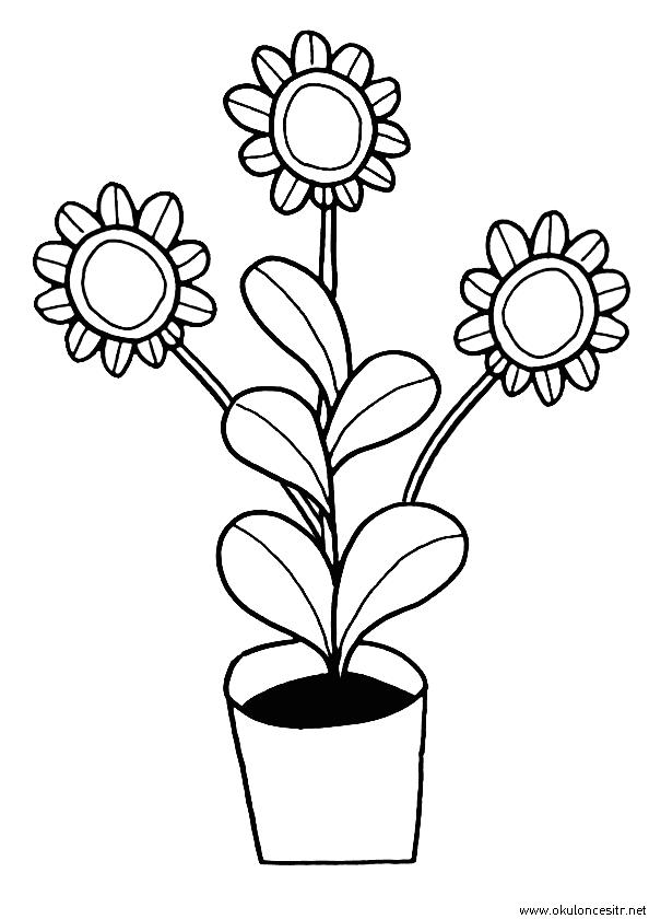 Ayçiçek Boyama Sayfası