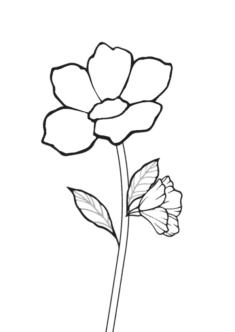cicek7-boyama-sayfasi