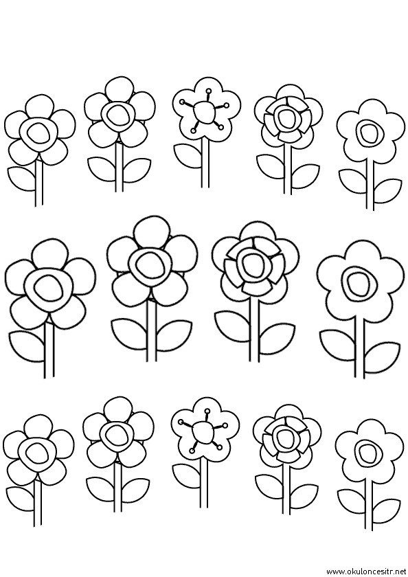Çiçekleri Boyama Sayfası