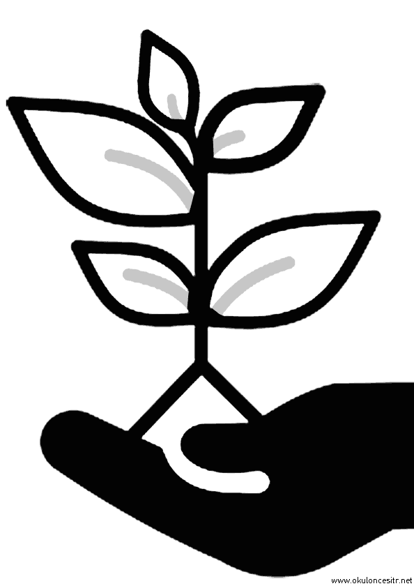Çiçek Fidesi Boyama Sayfası