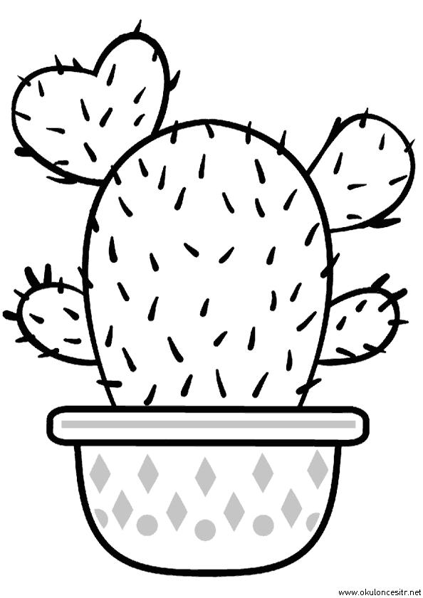 Kaktüs Boyama Sayfası