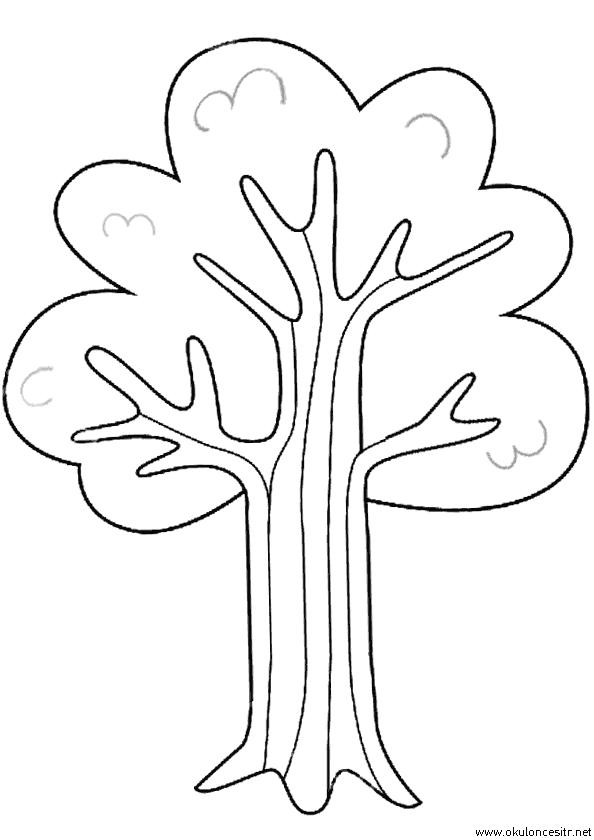 Ağaç Boyama