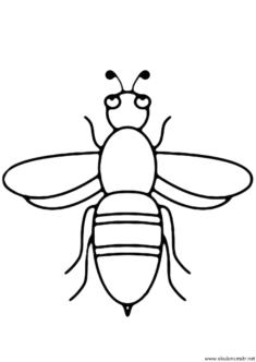 ari-boyama-sayfasi-bee-coloring-page-(38)