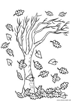sonbahar-boyama-sayfasi-(34)