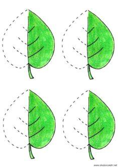 yaprak-cizgi-calisma-sayfalari (12)