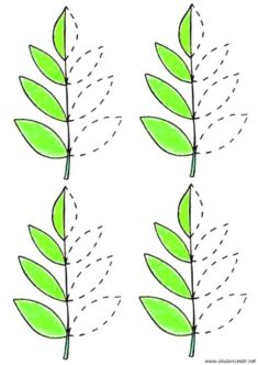 yaprak-cizgi-calisma-sayfalari (6)
