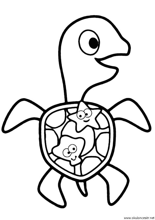 Kaplumbağa Boyama