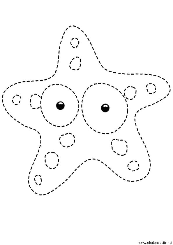 Deniz Yıldızı Çizgi Çalışması
