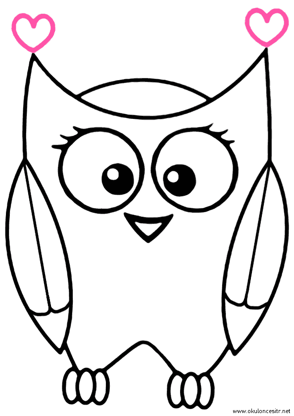 Baykuş Boyama