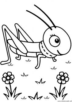 cekirge-boyama-grasshopper-coloring-page (2)