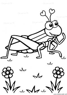 cekirge-boyama-grasshopper-coloring-page (3)