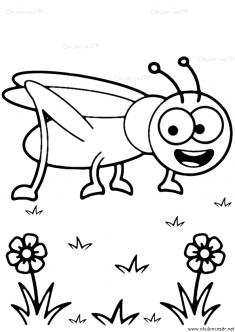 cekirge-boyama-grasshopper-coloring-page (5)