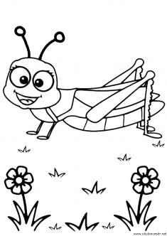 cekirge-boyama-grasshopper-coloring-page (6)