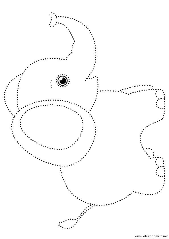 Fil Çizgi Çalışması