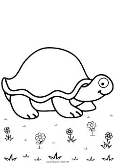 kaplumbaga-boyama-turtle-coloringpage (17)