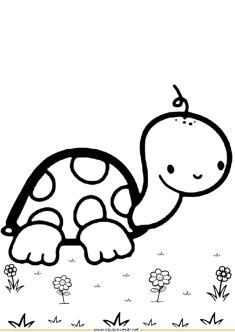 kaplumbaga-boyama-turtle-coloringpage (8)