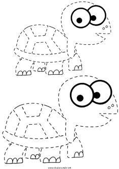 kaplumbaga-cizgi-calisma-sayfasi (1)